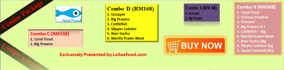 LoSeafood Home|We launch our combo package offer, all included with FREE delivery, even Combo A @ RM68